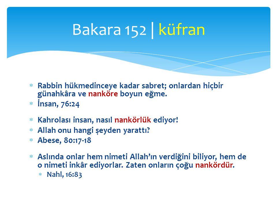 Bakara 152 | küfran Rabbin hükmedinceye kadar sabret; onlardan hiçbir günahkâra ve nanköre boyun eğme.