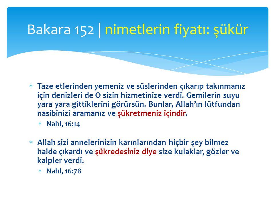 Bakara 152 | nimetlerin fiyatı: şükür