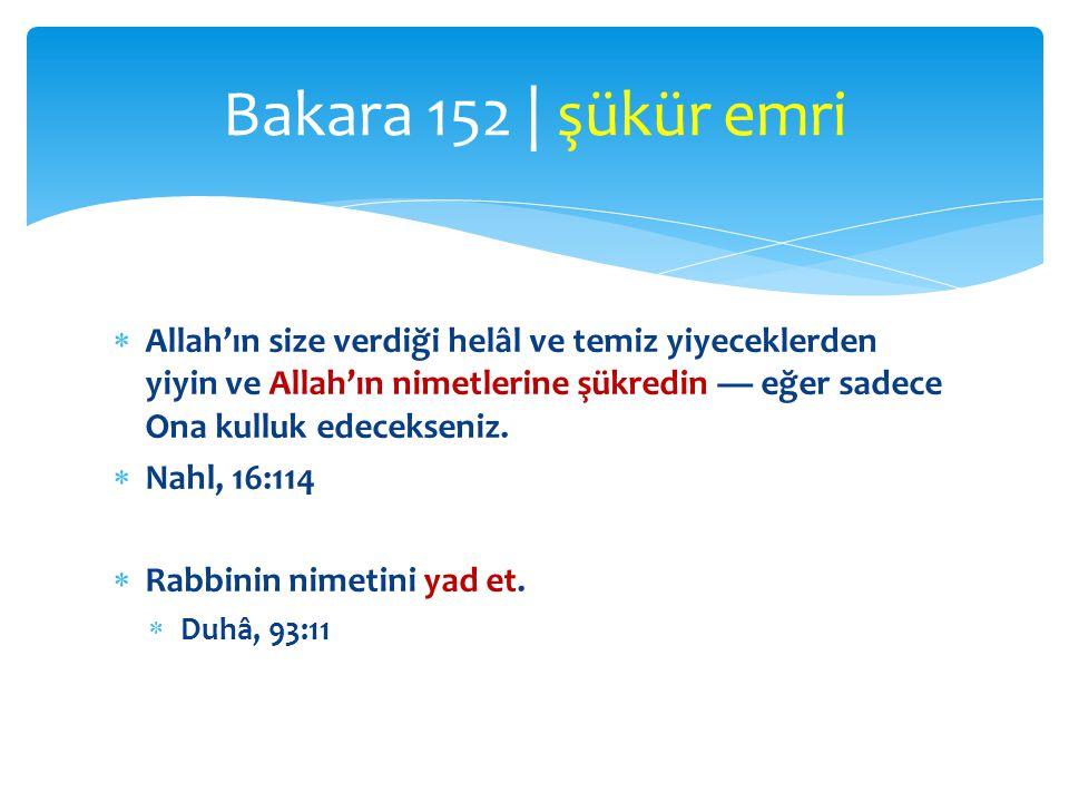 Bakara 152 | şükür emri