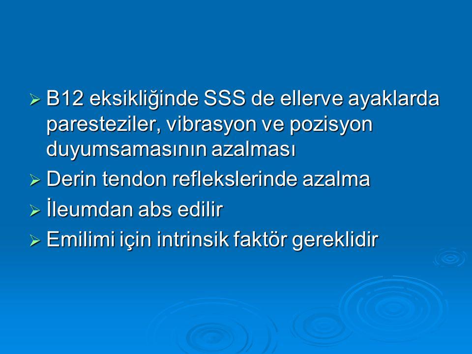 B12 eksikliğinde SSS de ellerve ayaklarda paresteziler, vibrasyon ve pozisyon duyumsamasının azalması