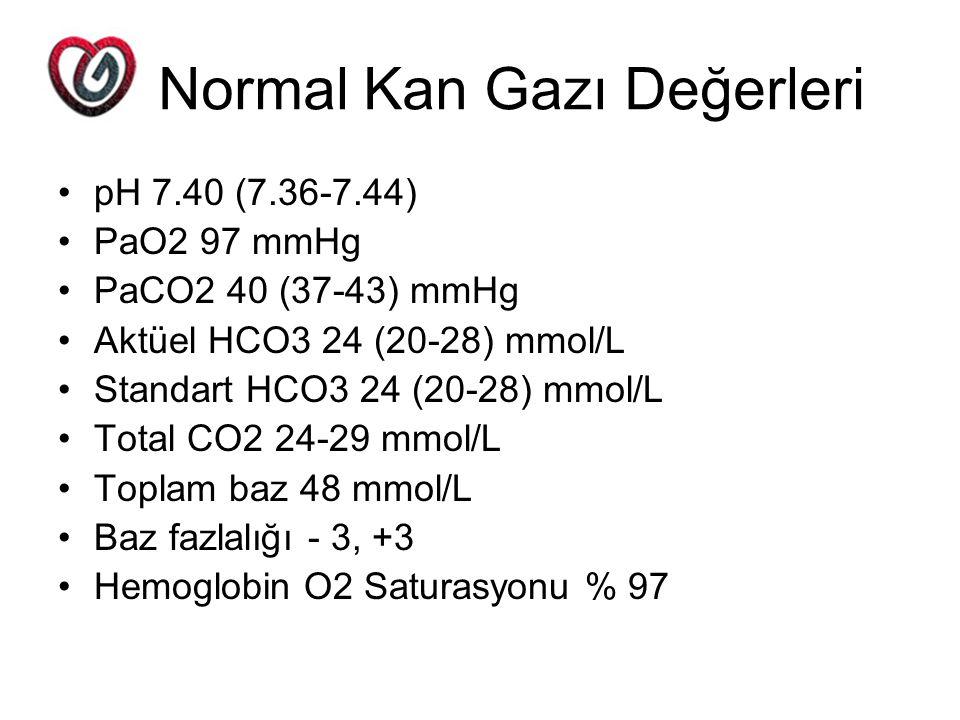 Normal Kan Gazı Değerleri