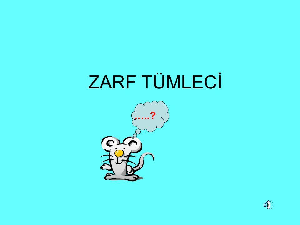 ZARF TÜMLECİ …..