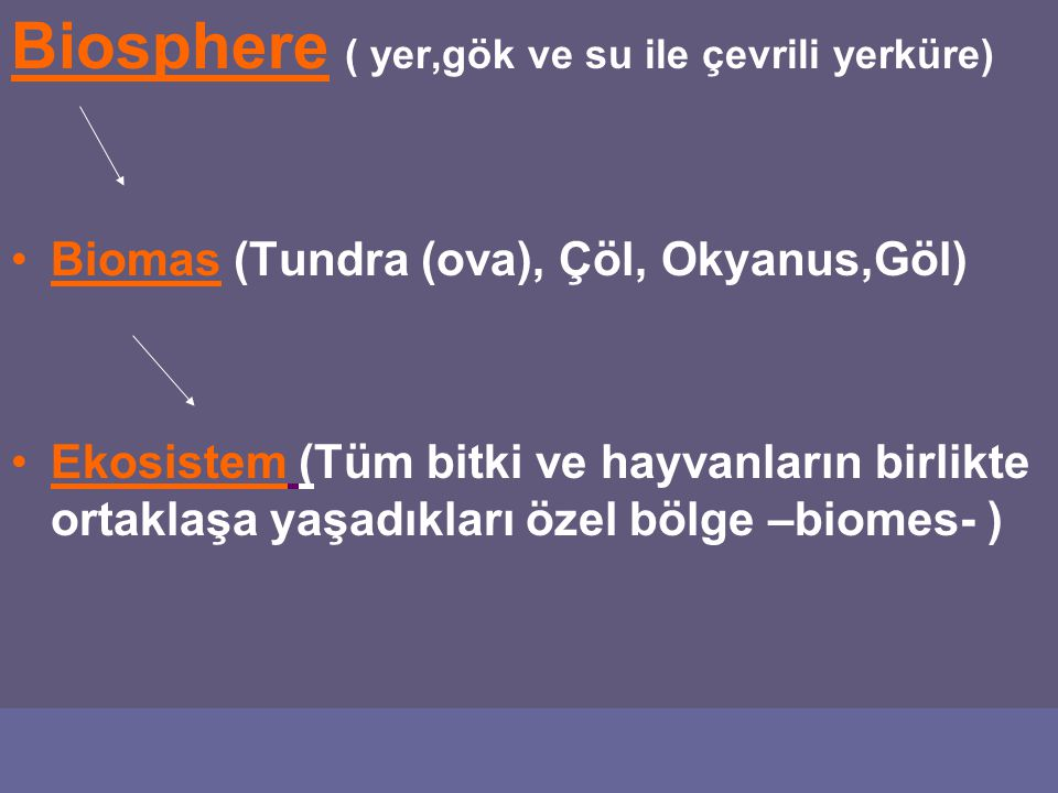 Biosphere ( yer,gök ve su ile çevrili yerküre)