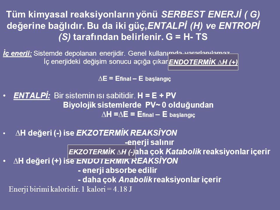 Tüm kimyasal reaksiyonların yönü SERBEST ENERJİ ( G) değerine bağlıdır