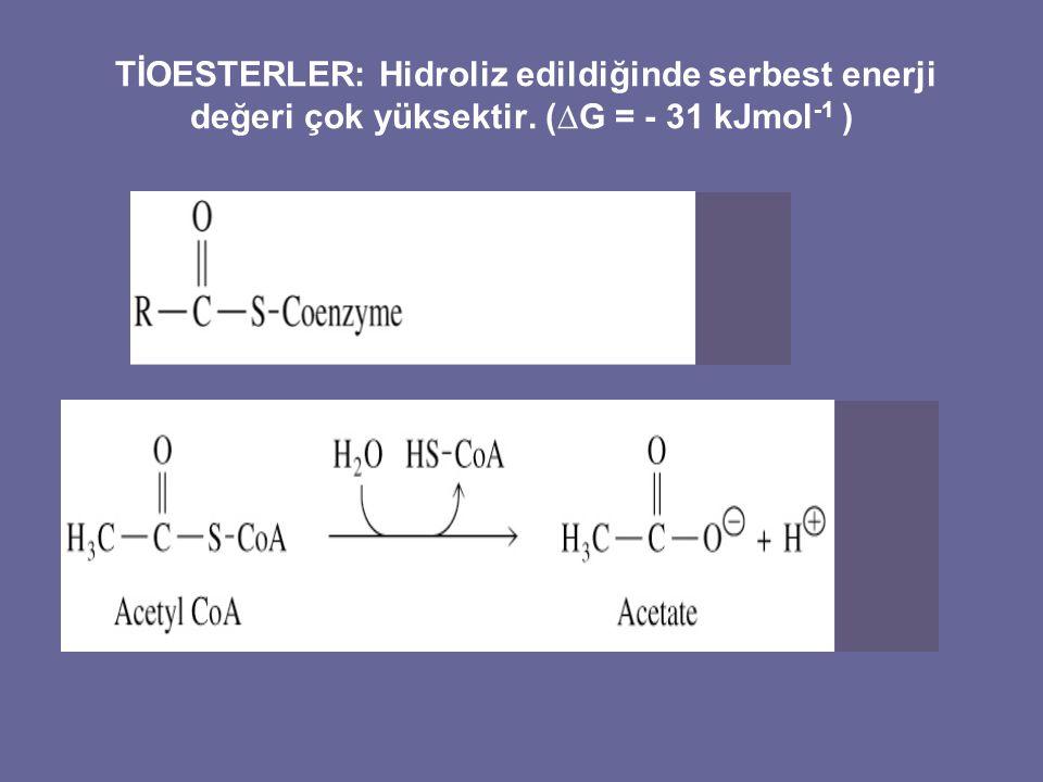 TİOESTERLER: Hidroliz edildiğinde serbest enerji değeri çok yüksektir