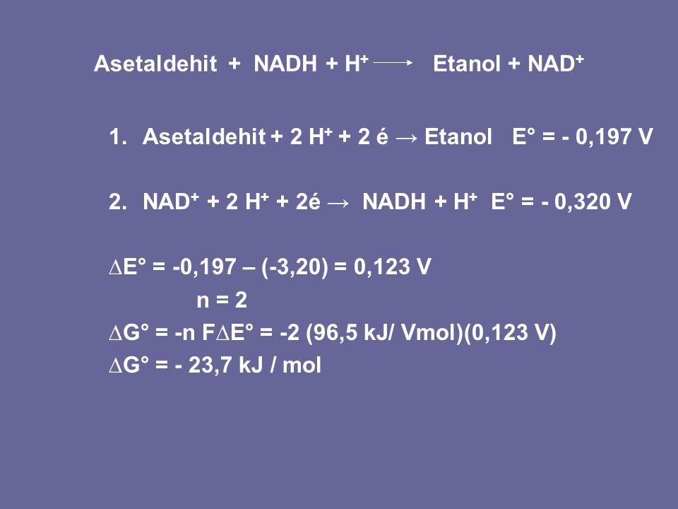 Asetaldehit + NADH + H+ Etanol + NAD+