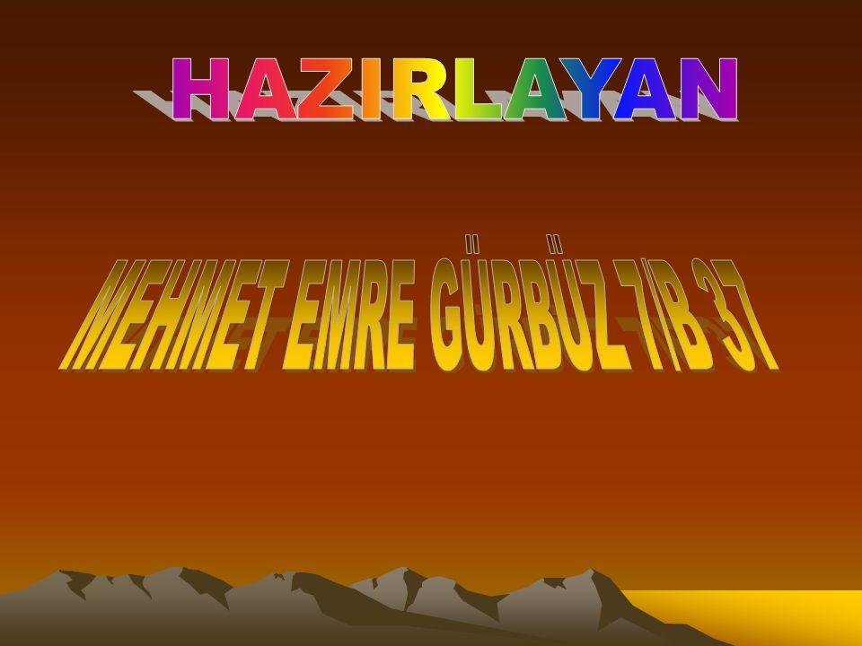 HAZIRLAYAN MEHMET EMRE GÜRBÜZ 7/B 37