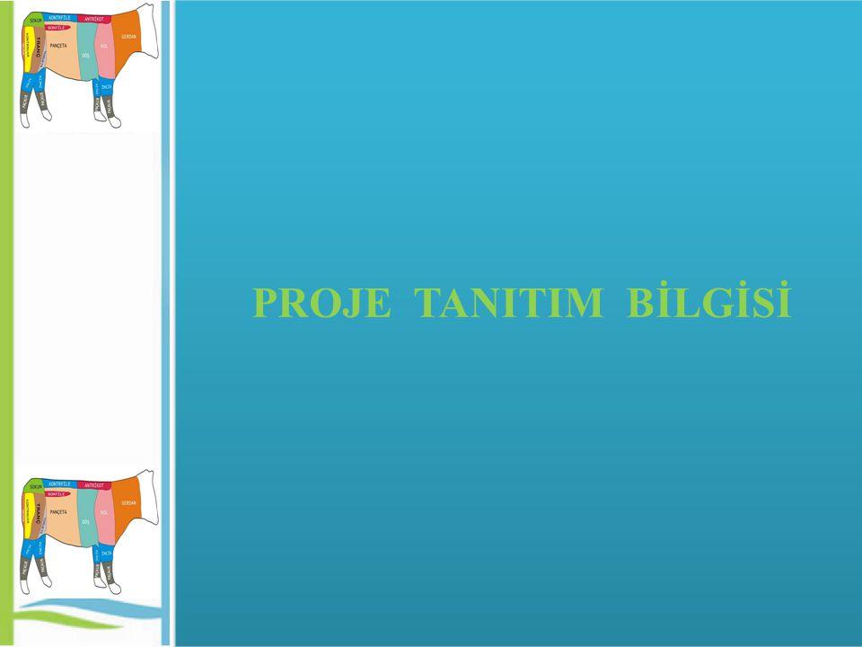 PROJE TANITIM BİLGİSİ