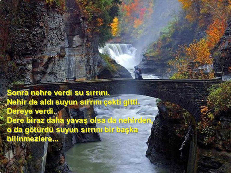 Sonra nehre verdi su sırrını. Nehir de aldı suyun sırrını çekti gitti