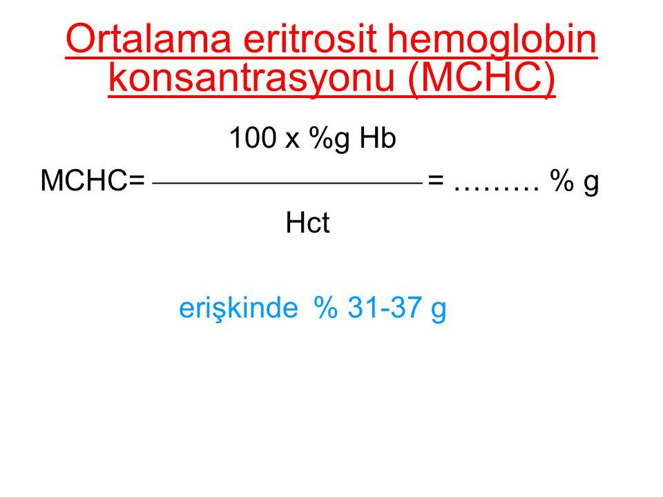 Ortalama eritrosit hemoglobin konsantrasyonu (MCHC)