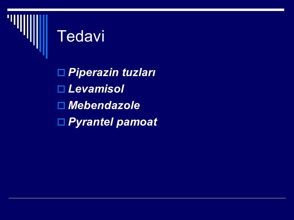 Tedavi Piperazin tuzları Levamisol Mebendazole Pyrantel pamoat