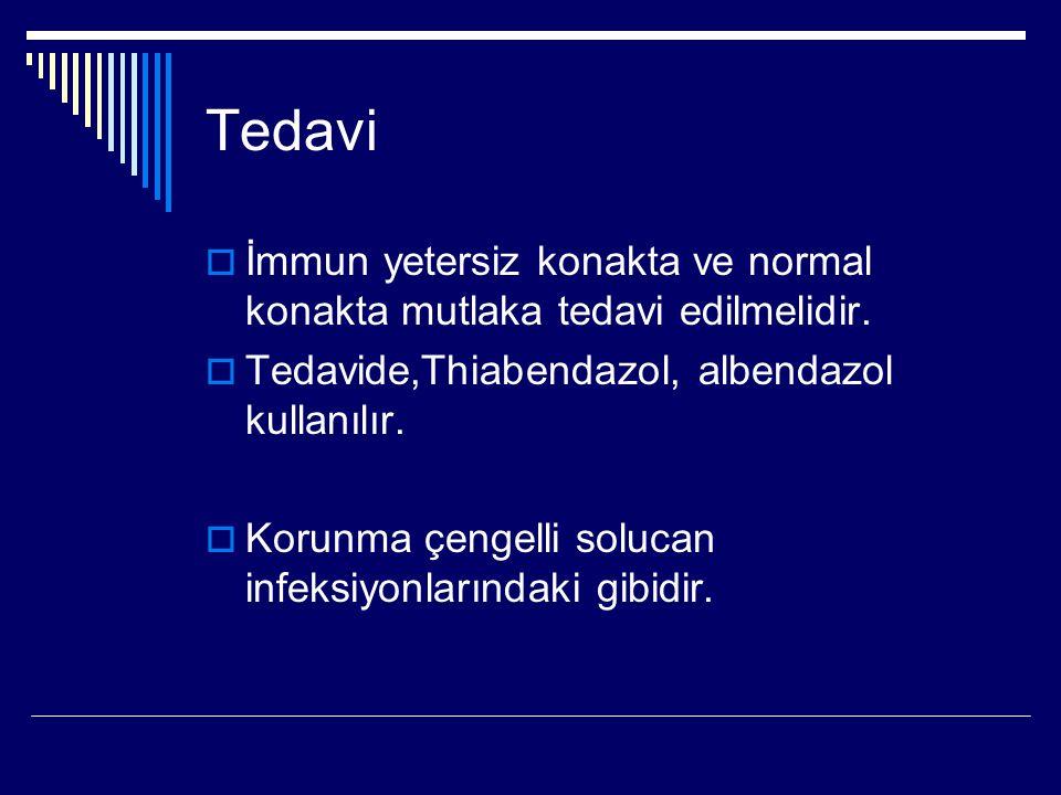 Tedavi İmmun yetersiz konakta ve normal konakta mutlaka tedavi edilmelidir. Tedavide,Thiabendazol, albendazol kullanılır.