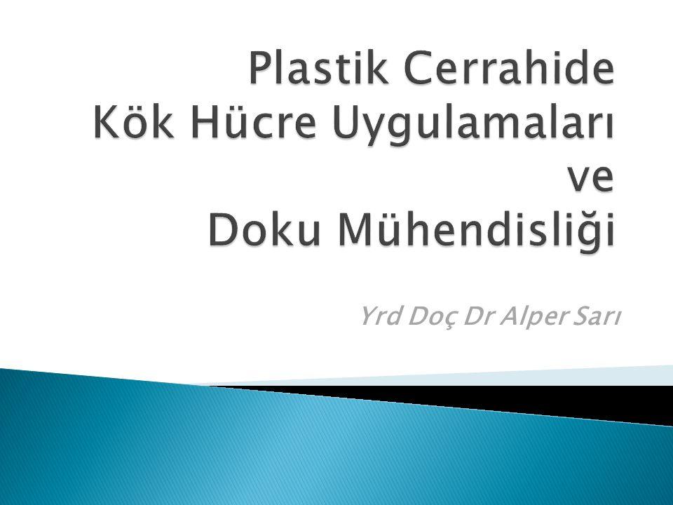Plastik Cerrahide Kök Hücre Uygulamaları ve Doku Mühendisliği