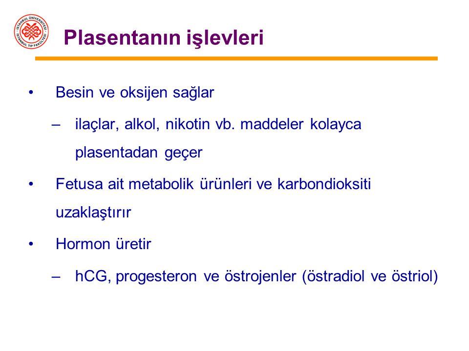 Plasentanın işlevleri