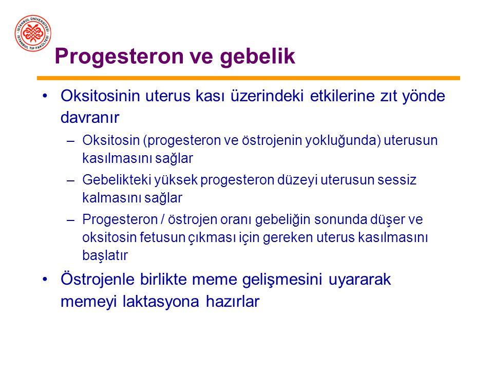 Progesteron ve gebelik