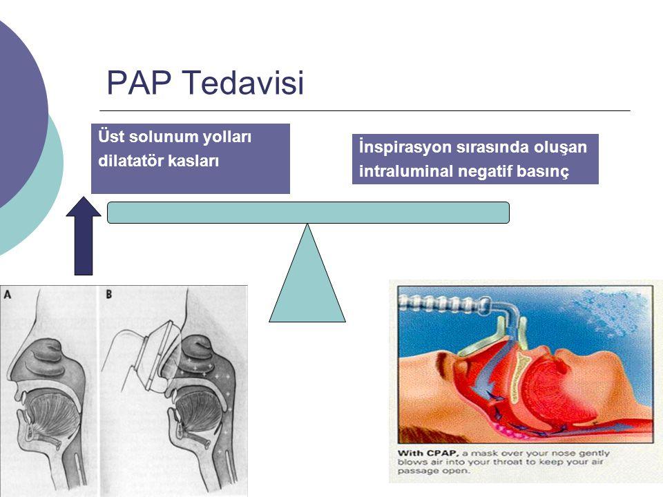 PAP Tedavisi Üst solunum yolları dilatatör kasları