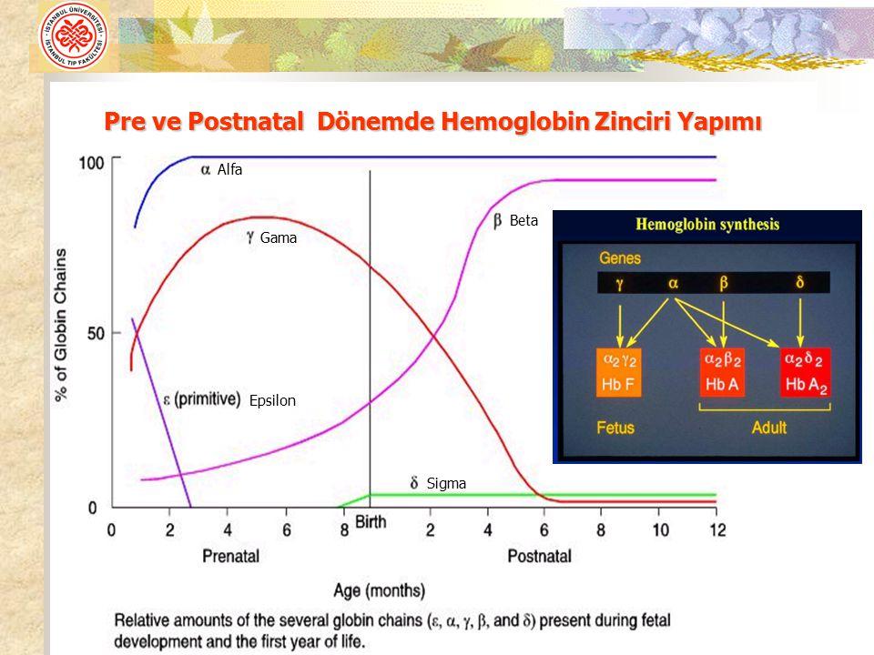 Pre ve Postnatal Dönemde Hemoglobin Zinciri Yapımı