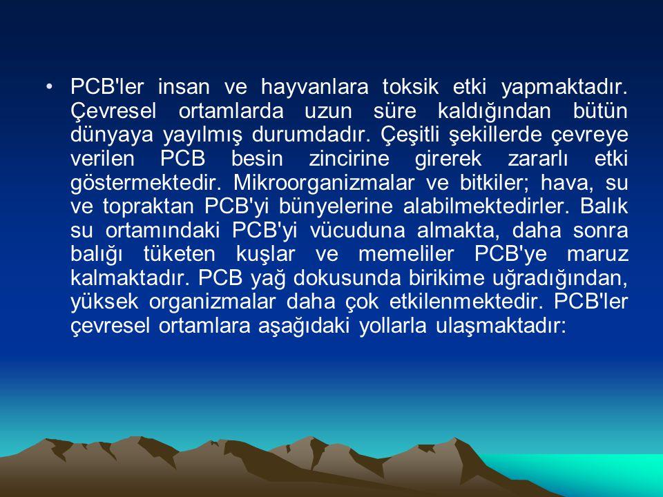 PCB ler insan ve hayvanlara toksik etki yapmaktadır