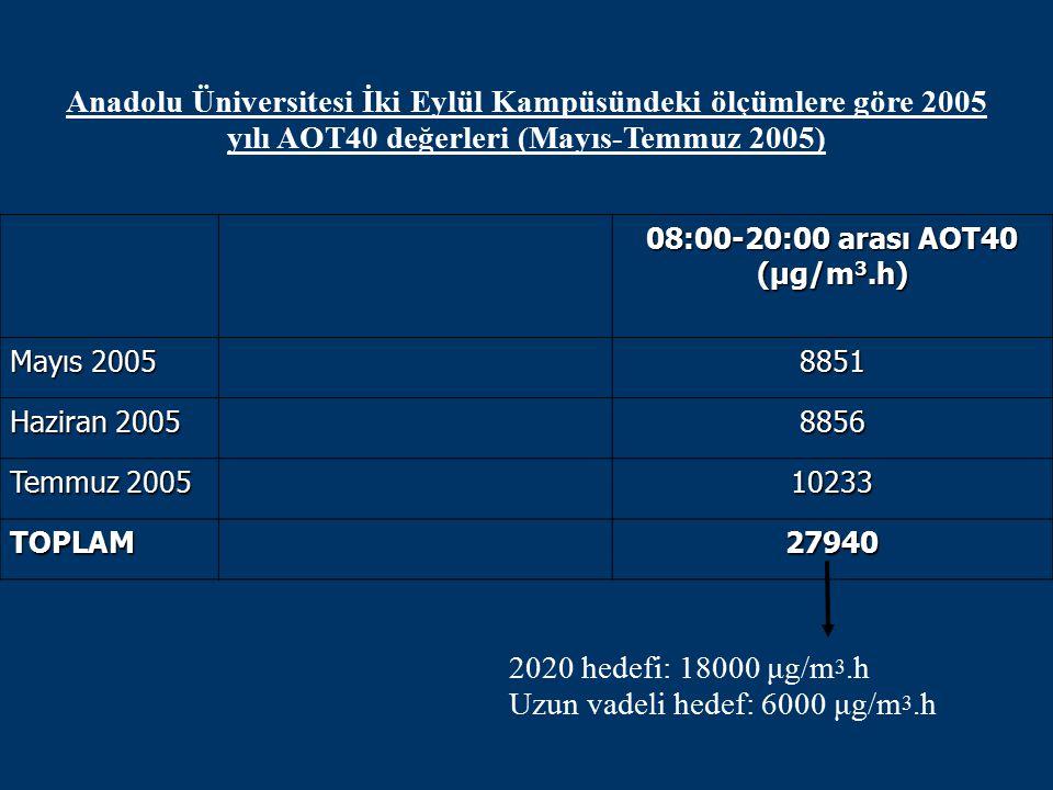 Uzun vadeli hedef: 6000 μg/m3.h