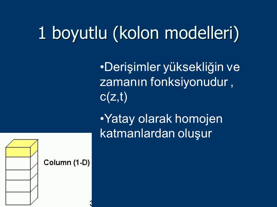 1 boyutlu (kolon modelleri)