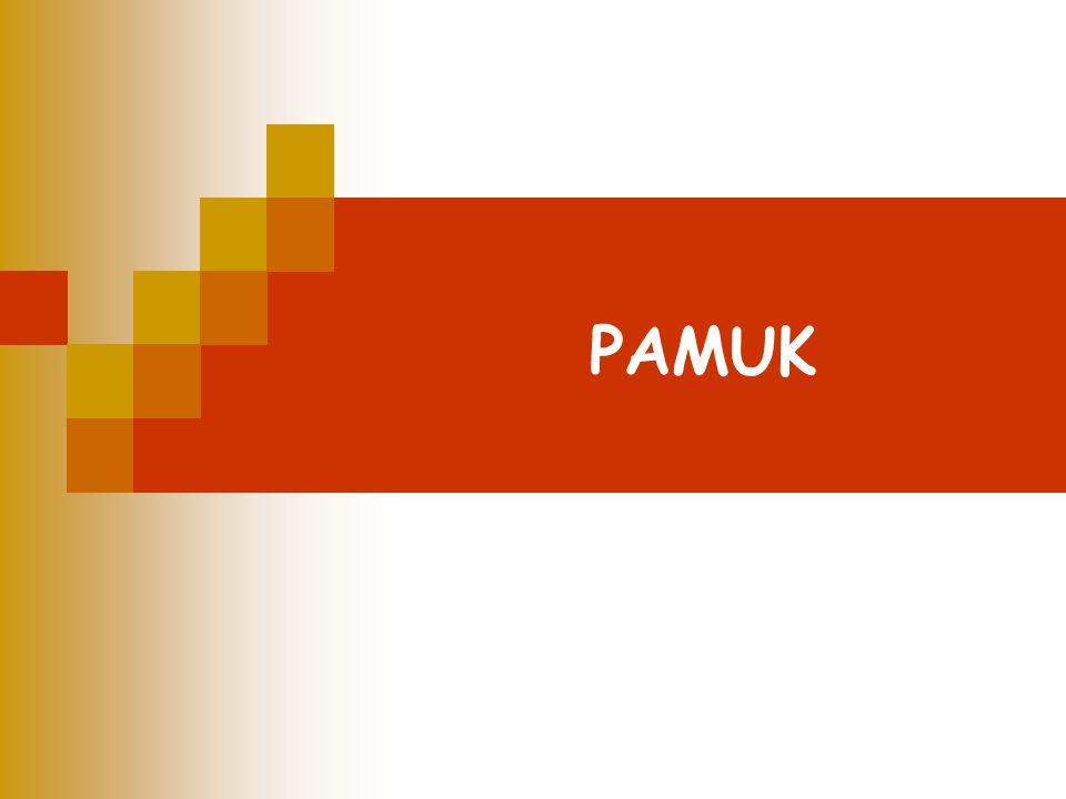 PAMUK