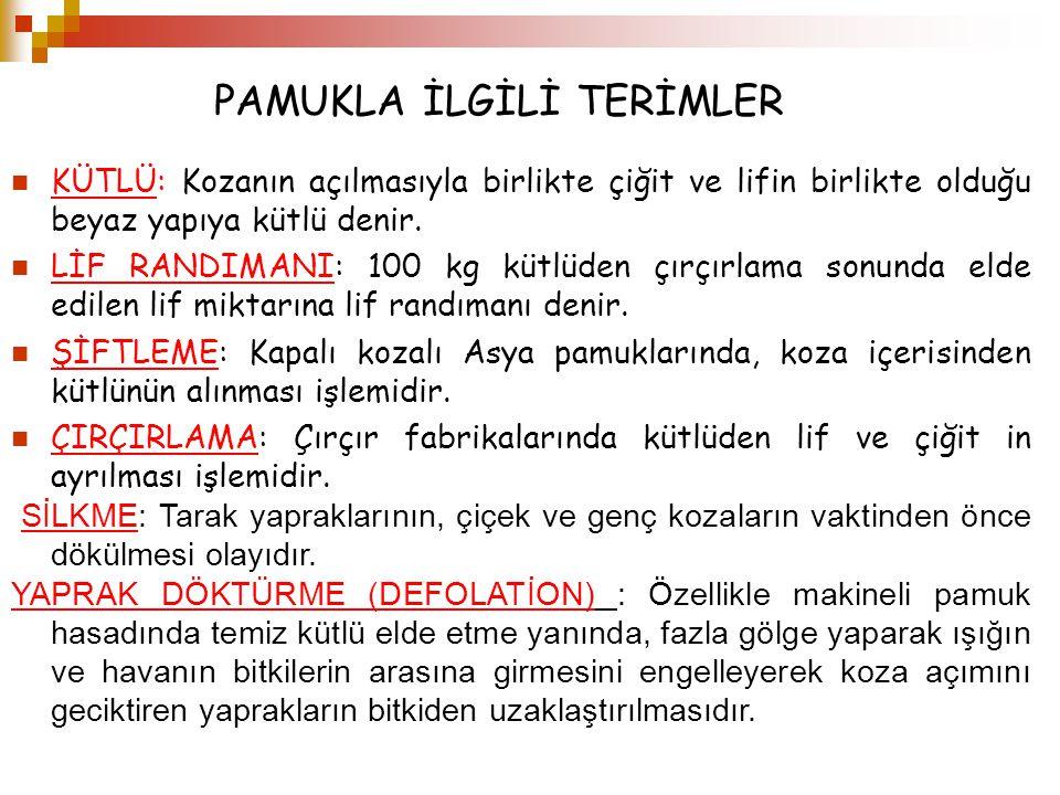PAMUKLA İLGİLİ TERİMLER