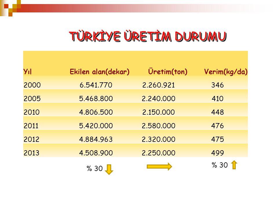 TÜRKİYE ÜRETİM DURUMU Yıl Ekilen alan(dekar) Üretim(ton) Verim(kg/da)