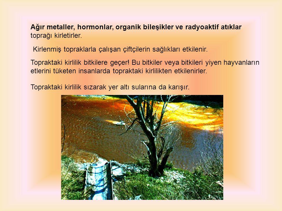 Ağır metaller, hormonlar, organik bileşikler ve radyoaktif atıklar toprağı kirletirler.