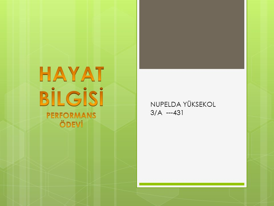 HAYAT BİLGİSİ PERFORMANS ÖDEVİ NUPELDA YÜKSEKOL 3/A ---431