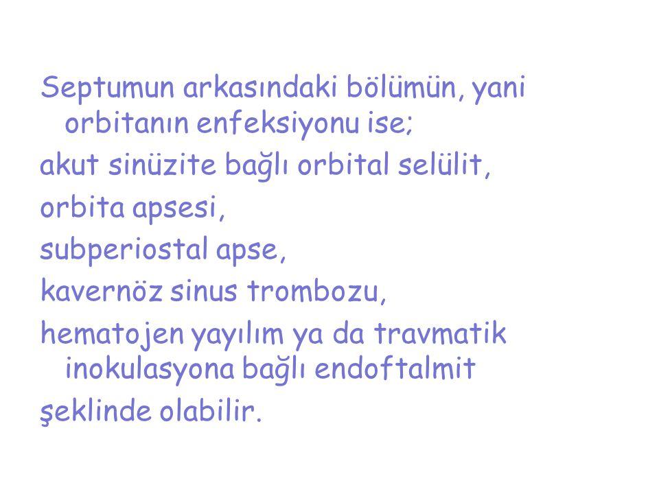 Septumun arkasındaki bölümün, yani orbitanın enfeksiyonu ise; akut sinüzite bağlı orbital selülit, orbita apsesi, subperiostal apse, kavernöz sinus trombozu, hematojen yayılım ya da travmatik inokulasyona bağlı endoftalmit şeklinde olabilir.
