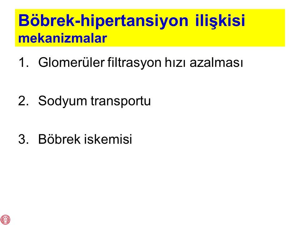Böbrek-hipertansiyon ilişkisi mekanizmalar