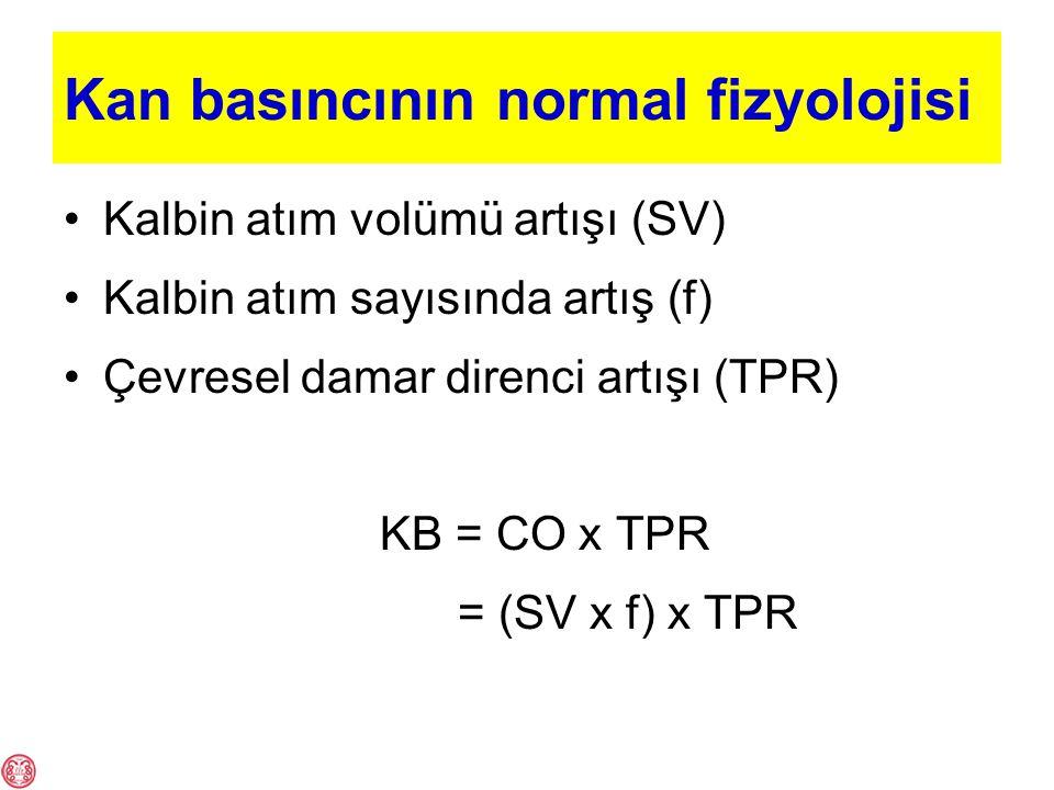 Kan basıncının normal fizyolojisi