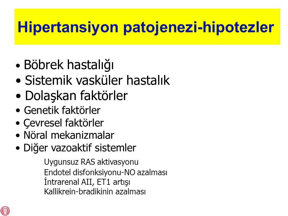 Hipertansiyon patojenezi-hipotezler