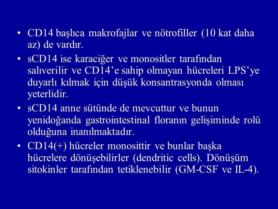 CD14 başlıca makrofajlar ve nötrofiller (10 kat daha az) de vardır.