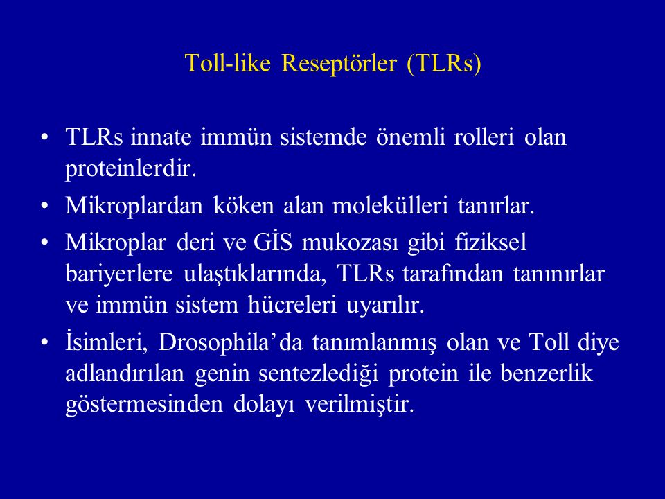Toll-like Reseptörler (TLRs)