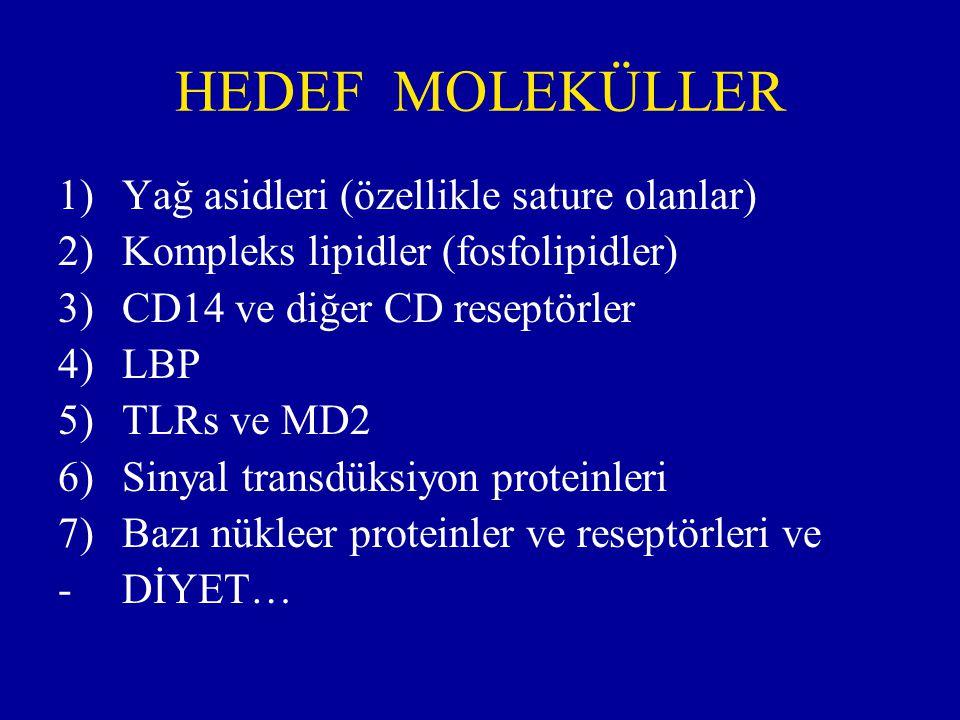 HEDEF MOLEKÜLLER Yağ asidleri (özellikle sature olanlar)