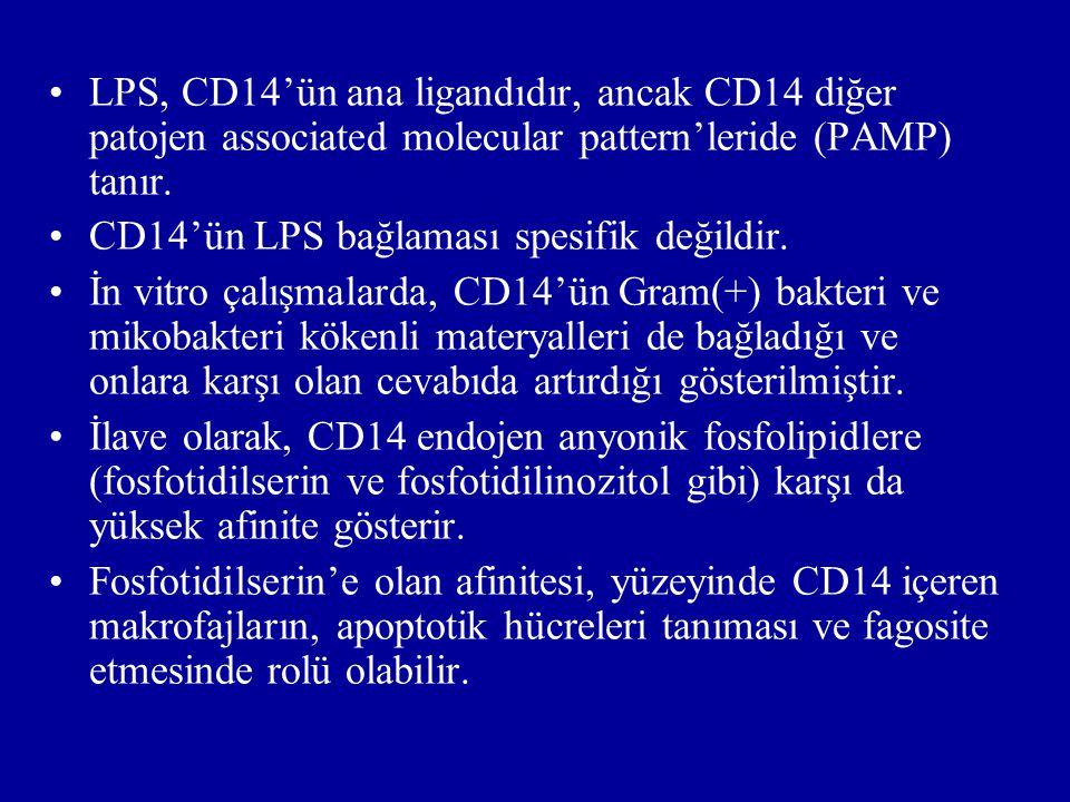 LPS, CD14'ün ana ligandıdır, ancak CD14 diğer patojen associated molecular pattern'leride (PAMP) tanır.