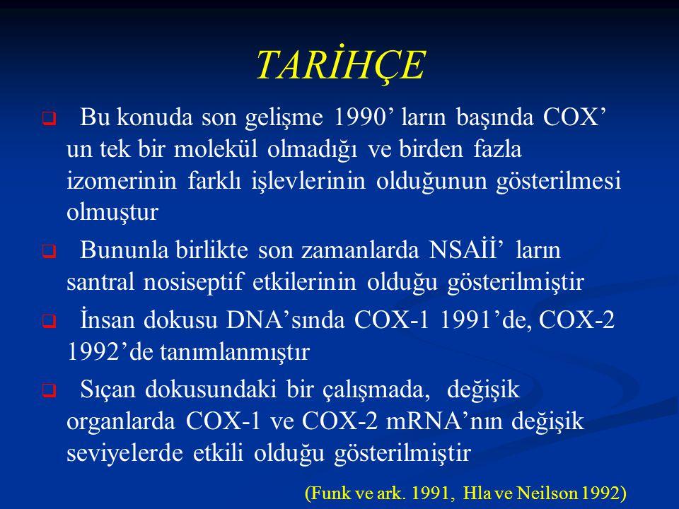 TARİHÇE