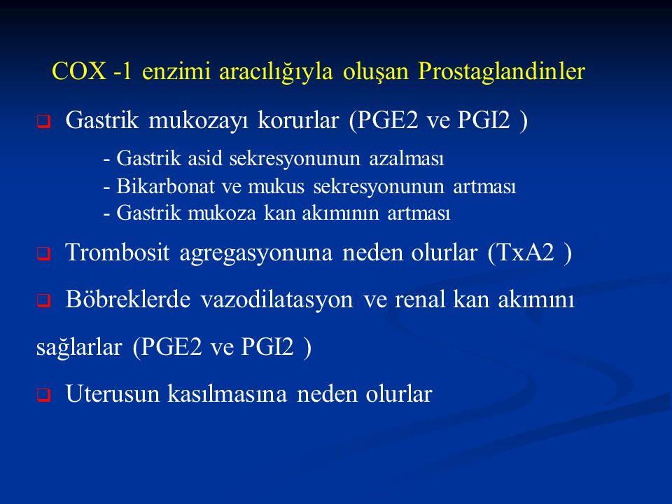 COX -1 enzimi aracılığıyla oluşan Prostaglandinler