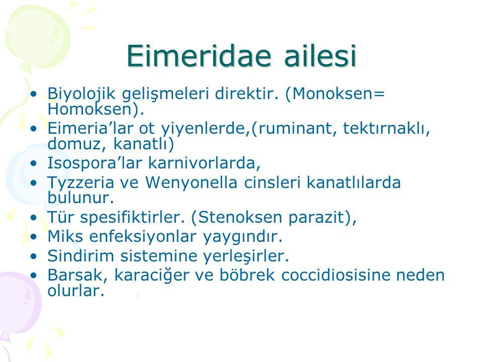 Eimeridae ailesi Biyolojik gelişmeleri direktir. (Monoksen= Homoksen).