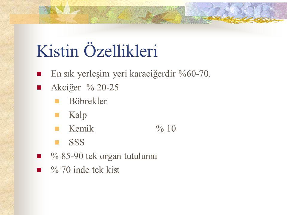 Kistin Özellikleri En sık yerleşim yeri karaciğerdir %60-70.