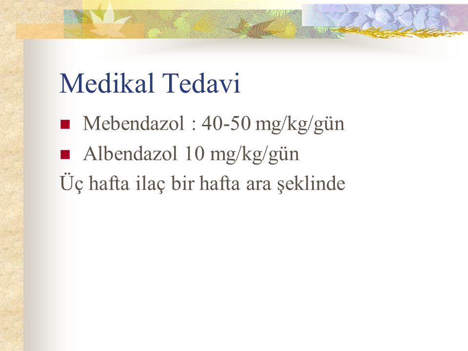 Medikal Tedavi Mebendazol : 40-50 mg/kg/gün Albendazol 10 mg/kg/gün
