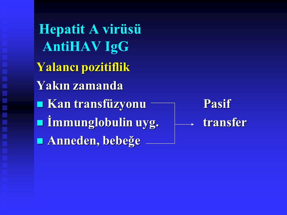 Hepatit A virüsü AntiHAV IgG