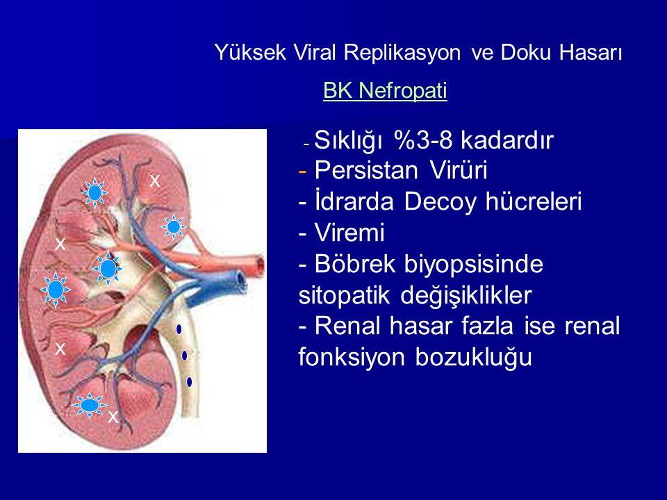 İdrarda Decoy hücreleri Viremi