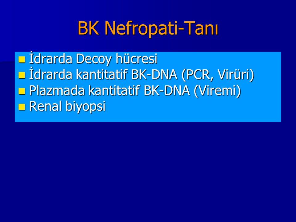 BK Nefropati-Tanı İdrarda Decoy hücresi