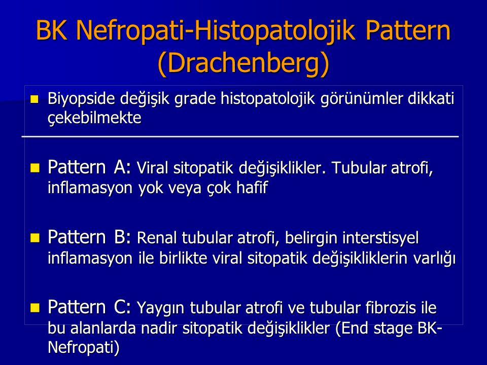 BK Nefropati-Histopatolojik Pattern (Drachenberg)