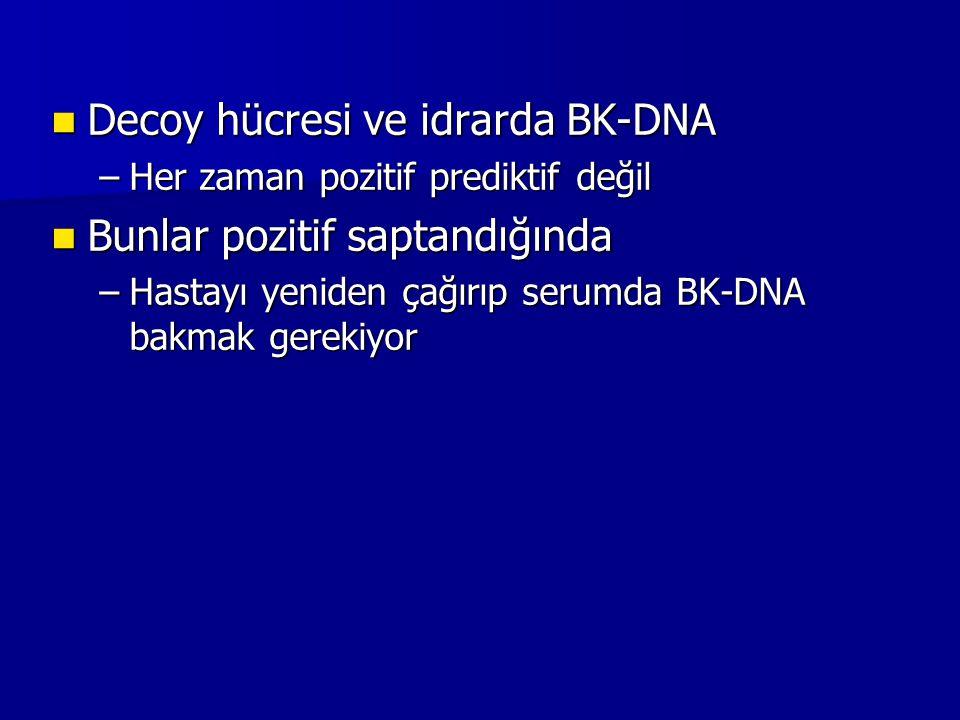 Decoy hücresi ve idrarda BK-DNA Bunlar pozitif saptandığında