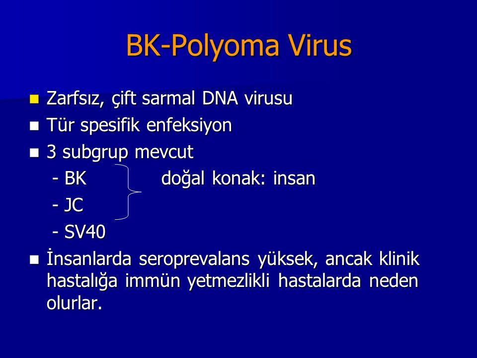 BK-Polyoma Virus Zarfsız, çift sarmal DNA virusu