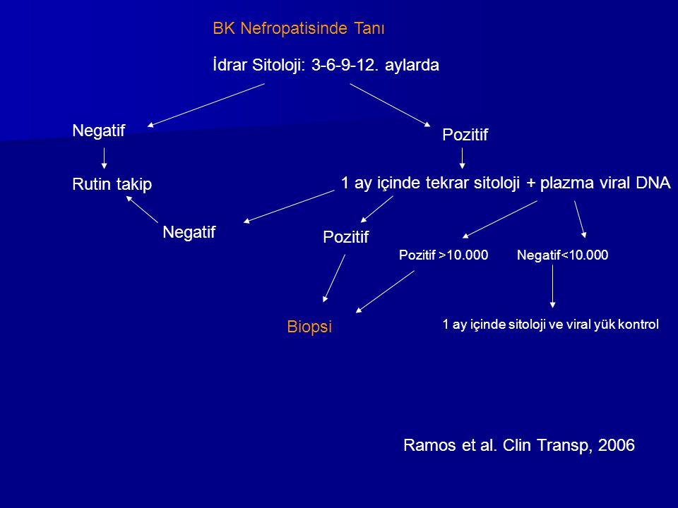 BK Nefropatisinde Tanı