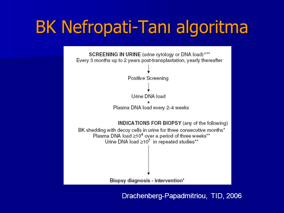 BK Nefropati-Tanı algoritma